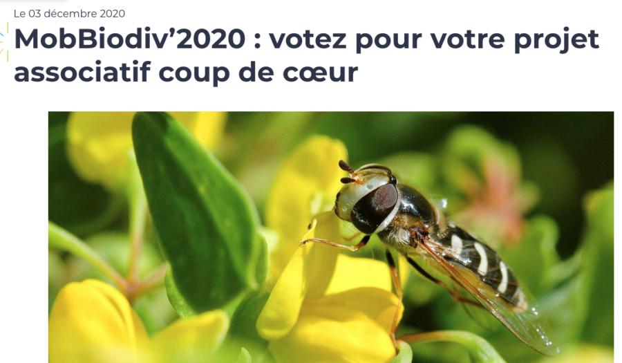 Mob'biodiv' : A vos votes  !